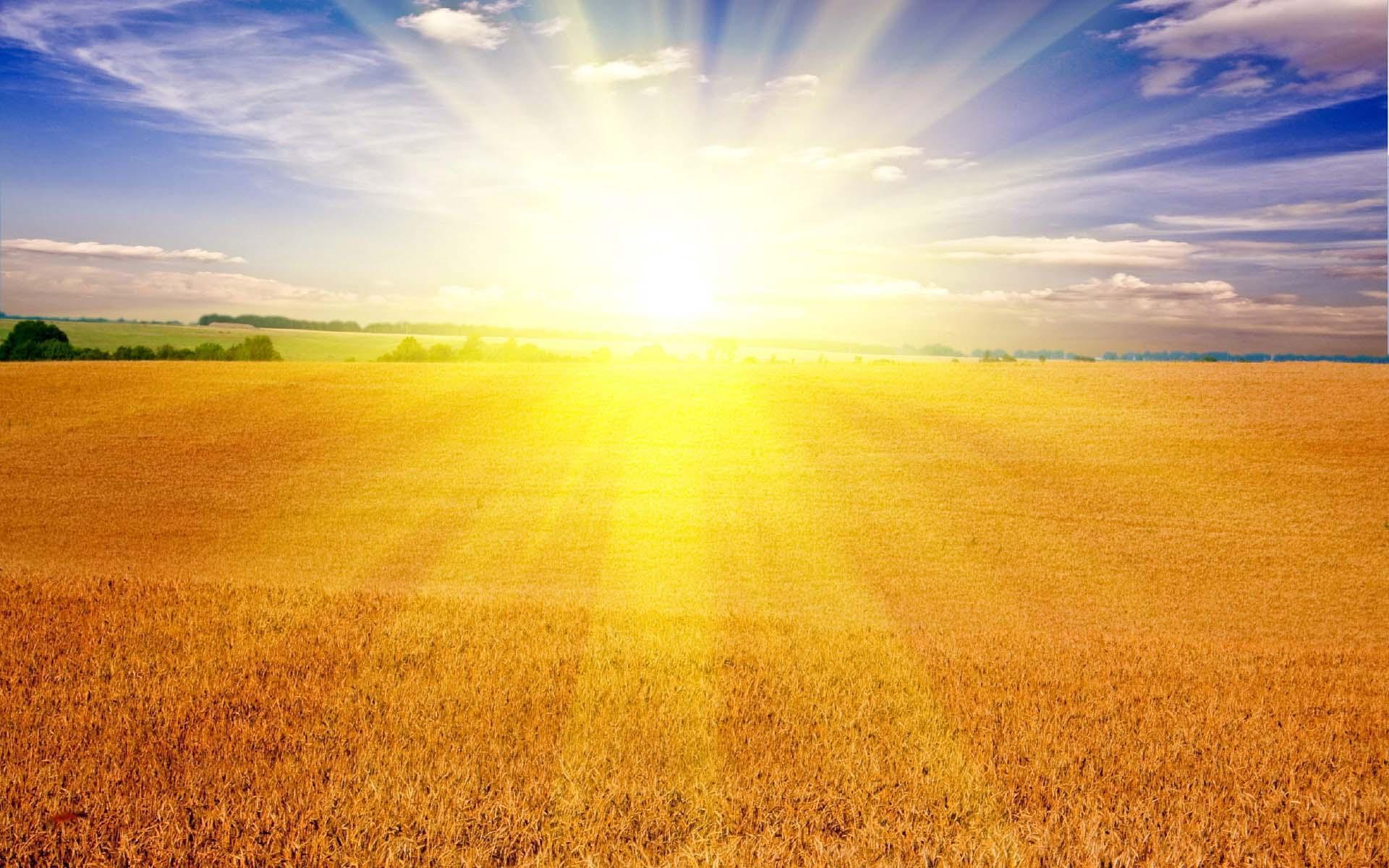 медитация наполнение светом и любовью